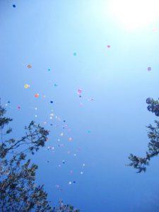 ballons tolerance 18mai16 (12)